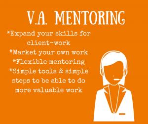 va mentoring